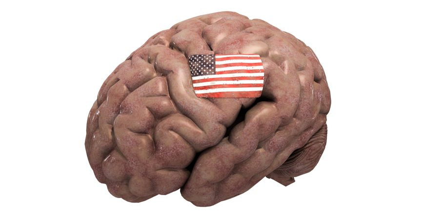 Brain with an American flag on it