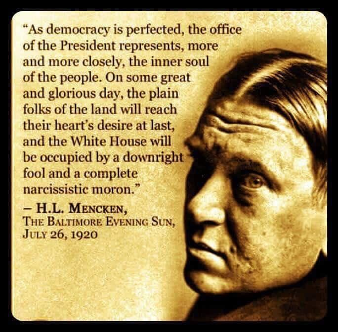 Image result for someday america will elect common man quote