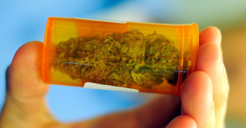 FALSE: Botched Medical Cannabis Trial in France