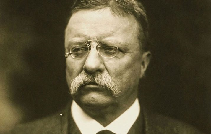 Radical Patriot Quoted By President >> Fact Check Theodore Roosevelt On Criticizing The President