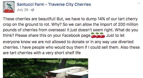 _15__Santucci_Farm_-_Traverse_City_Cherries_