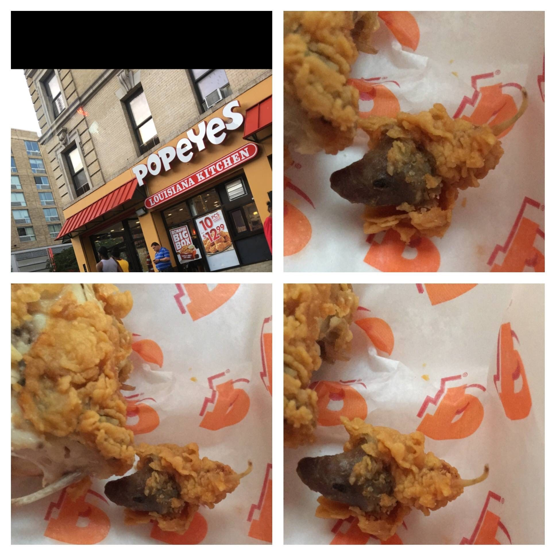 Customer Reports Finding Rat Head In Popeyes Chicken