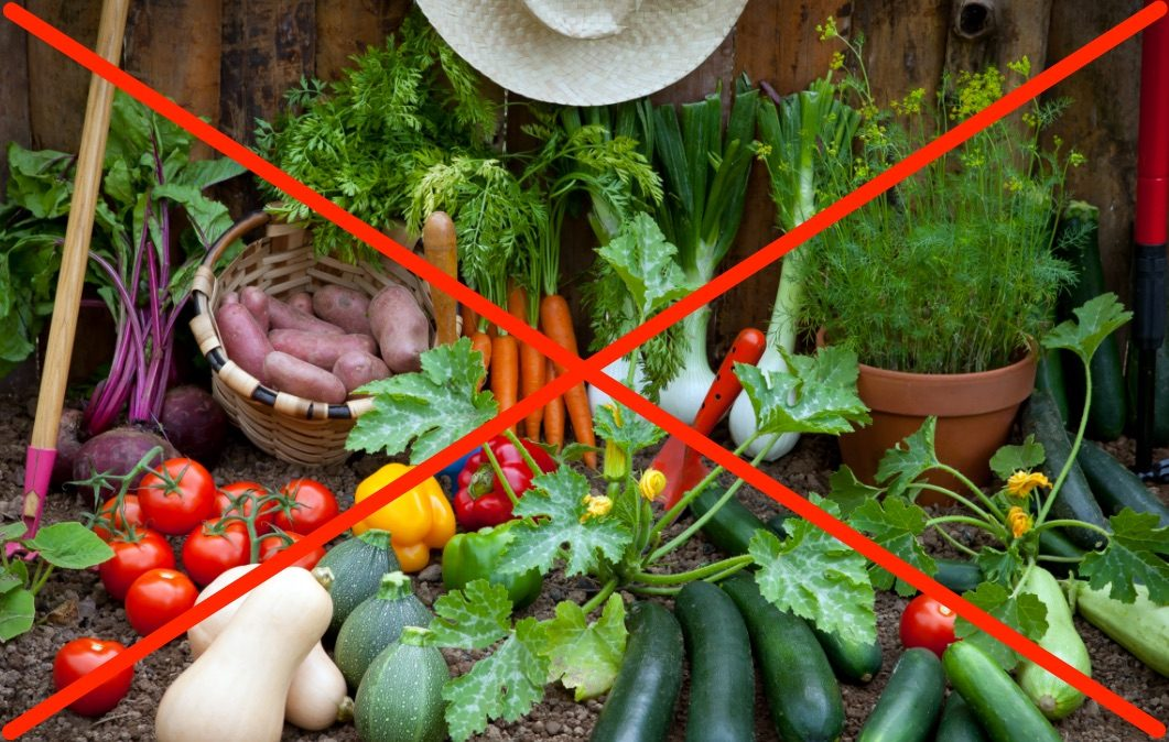 Judges Rules The Government Can Ban Vegetable Gardens