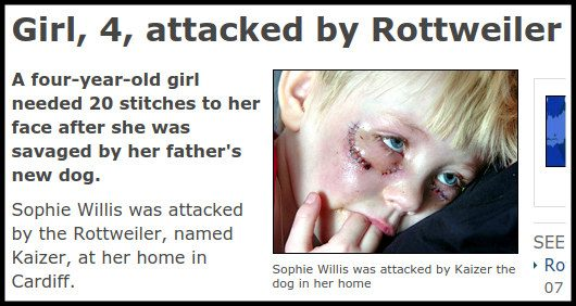 girl attacked