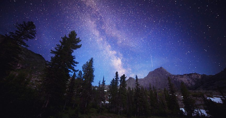 fact check are there more trees on earth than stars in the milky way
