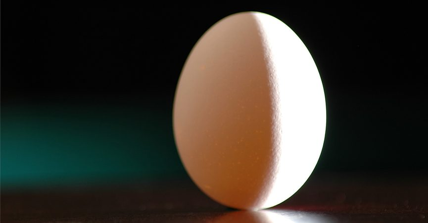 Autumn Is Almost Here Get Out Eggs >> Fact Check Egg Balancing On The Equinox