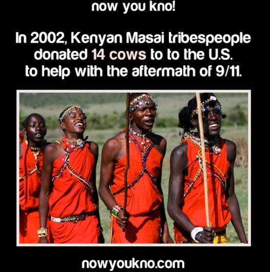 Did Masai Tribespeople Donate 14 Cows to the United States