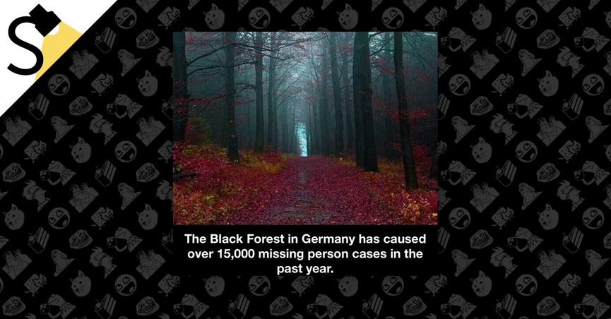 The Black Forest Germany >> Fact Check Did Germany S Black Forest Cause 15 000 Missing