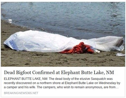 Fact Check Dead Bigfoot Confirmed At Elephant Butte Lake New Mexico