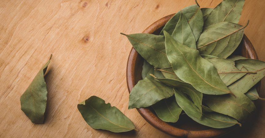 FACT CHECK: Will Burning Bay Leaves Reduce Anxiety?