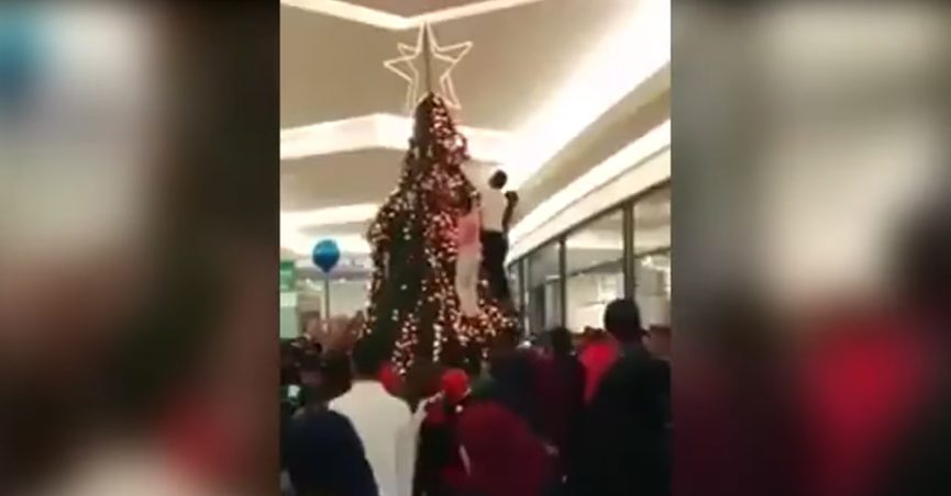 Fact Check Offended Muslims Attack Christmas Tree