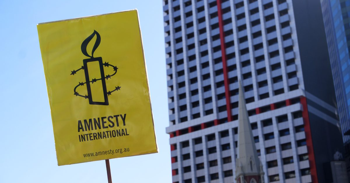 amnesty meaning in hindi