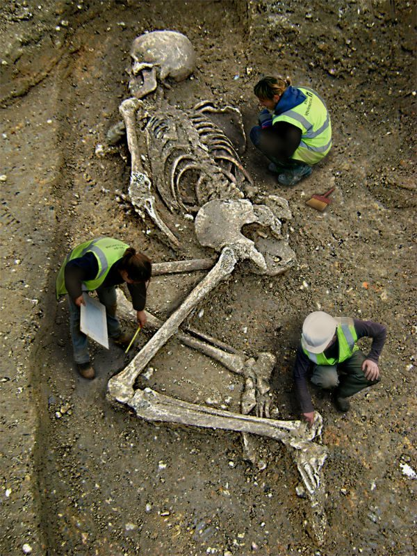 Image result for giant skeletons found israel goliath