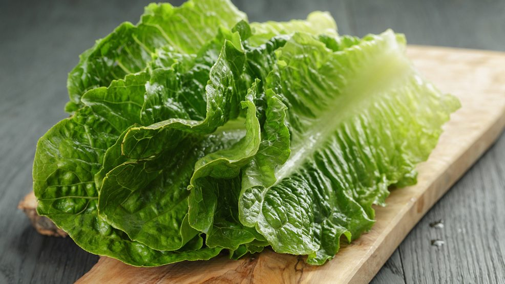 Does a 'Plastic' Layer Cover Romaine Lettuce?