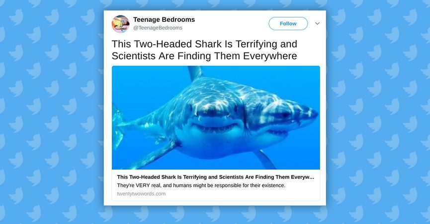 Are Two-Headed Sharks Terrorizing the Ocean?