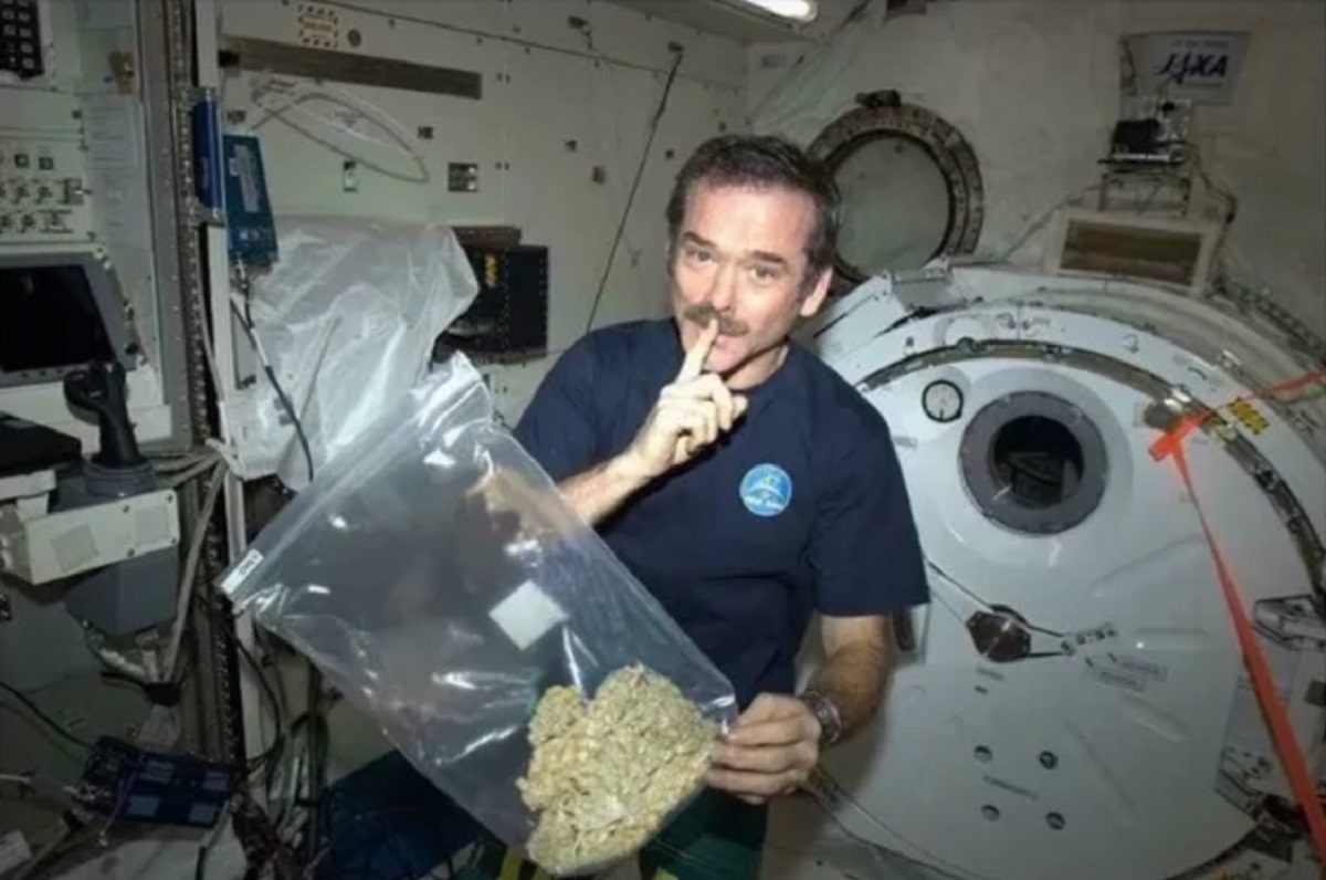 Did Astronaut Chris Hadfield Test the Effects of Marijuana in Space?