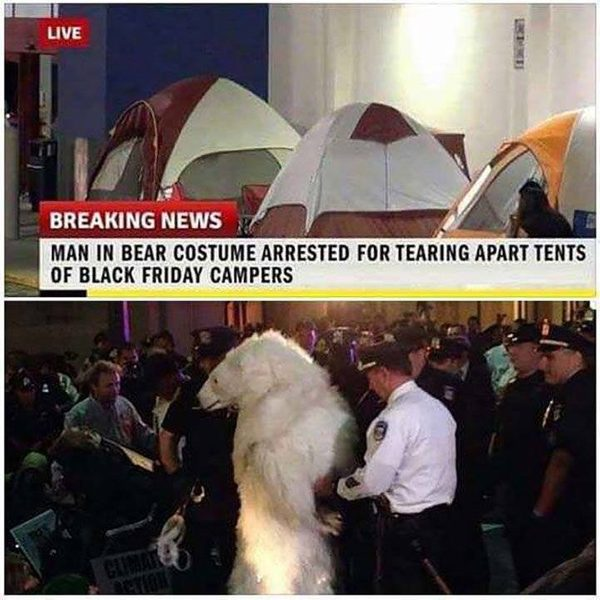 Was a Man in Bear Costume Arrested for Tearing Apart Tents