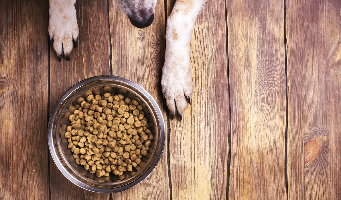 FDA Alerts Pet Owners About Recalls of Several Dry Pet Foods
