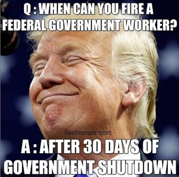 Fact Check Can Federal Government Workers Be Fired After 30 Days Of