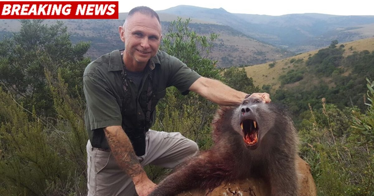 Was a Trophy Hunter Eaten Alive by Lions after He Killed 3