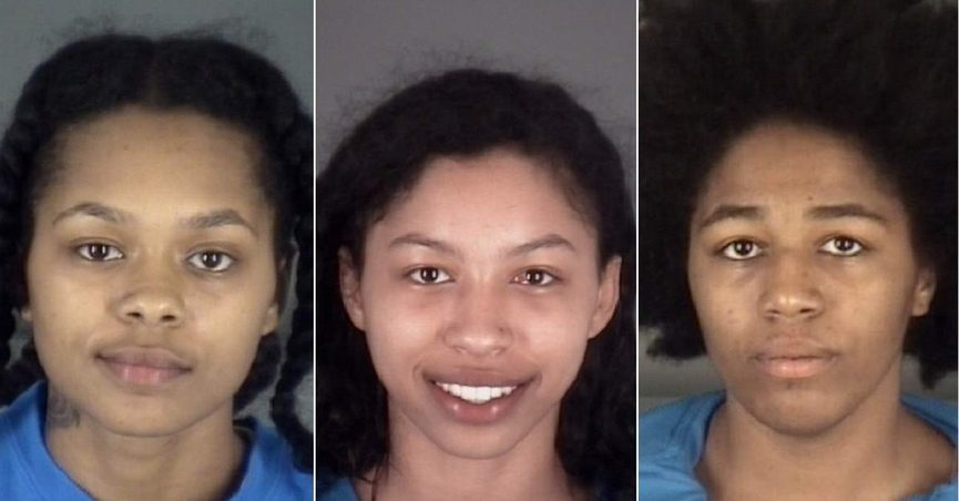 3 Naked Women at Rest Stop Lead Deputies on Chase in Florida