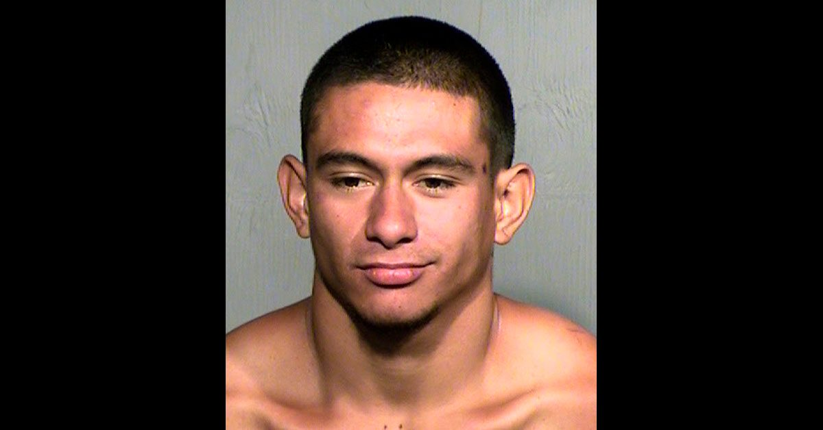 Police: Arizona Man Beheads Roommate's Dog as She Moves Out