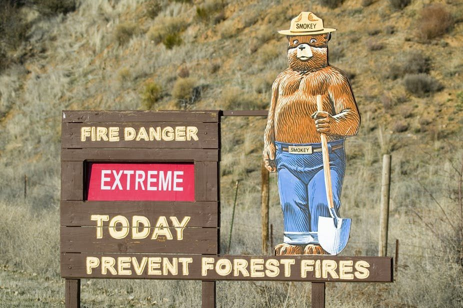 Smokey (the) Bear Is Still Keeping His Watchful Eye on America's Forests