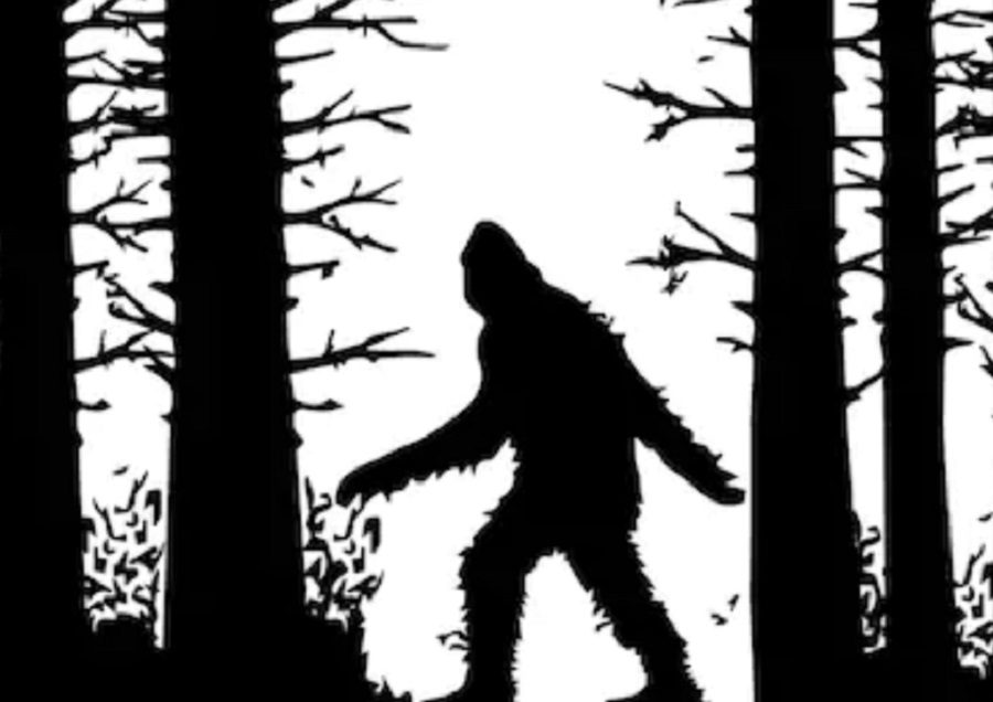 Oklahoma Lawmaker Proposes 'Bigfoot' Hunting Season - snopes