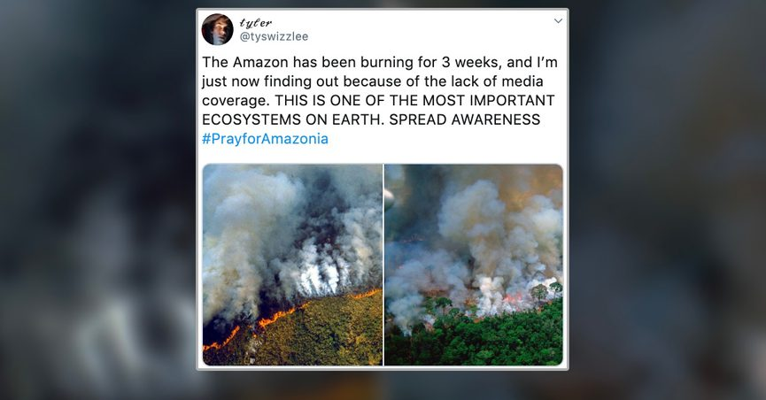 Was the Amazon Rainforest on Fire in August 2019?