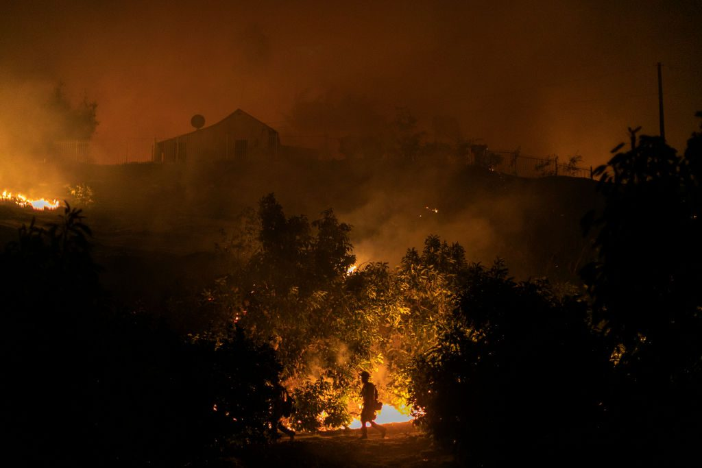 Did Trump Offer Russia Help With Wildfires, But Not California?