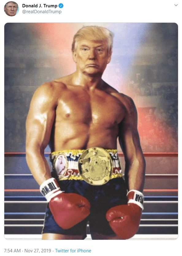 Image result for trump boxing