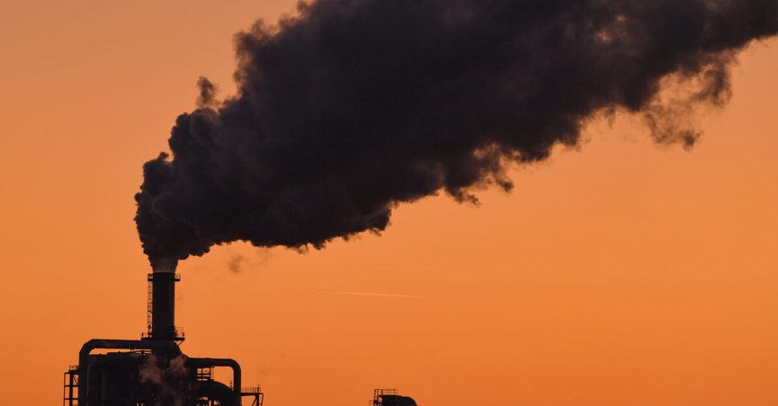 Right-leaning websites celebrated the findings of a February 2020 report by the International Energy Agency.