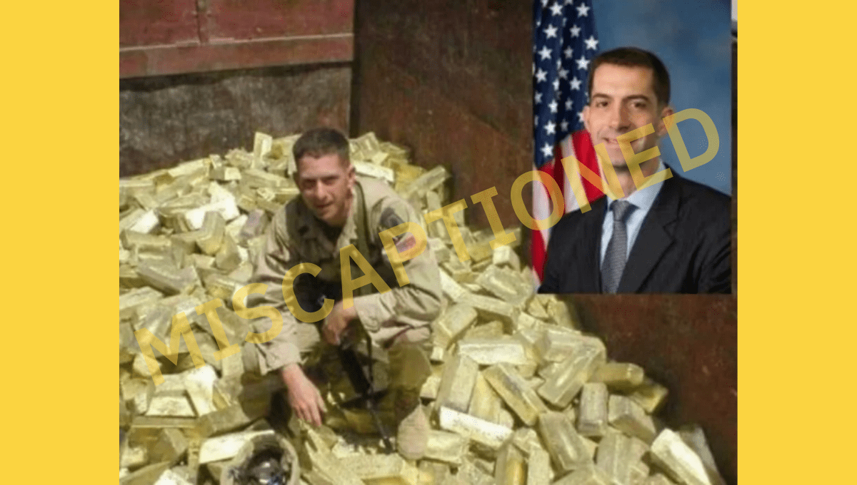 Is This U.S. Sen. Tom Cotton Sitting on a Pile of Gold? - snopes