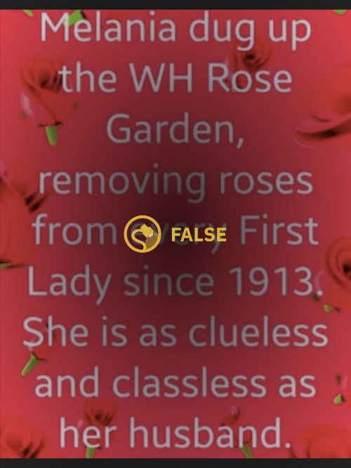 Did Melania Trump  U0026 39 Dig Up U0026 39  The Rose Garden At The White House