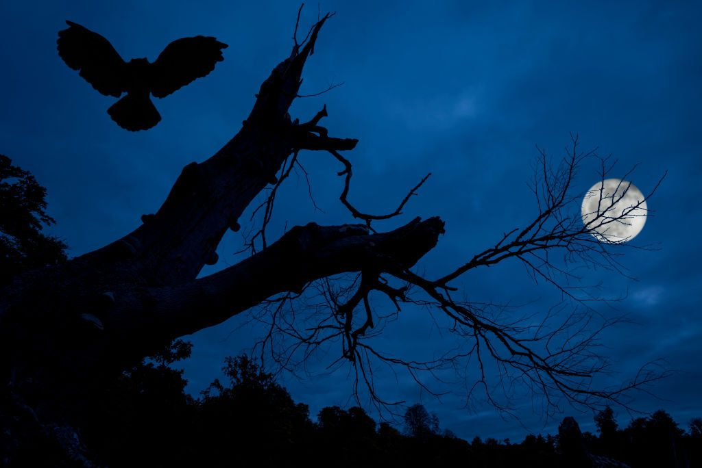 Will There Be a Full Moon on Halloween 2020?