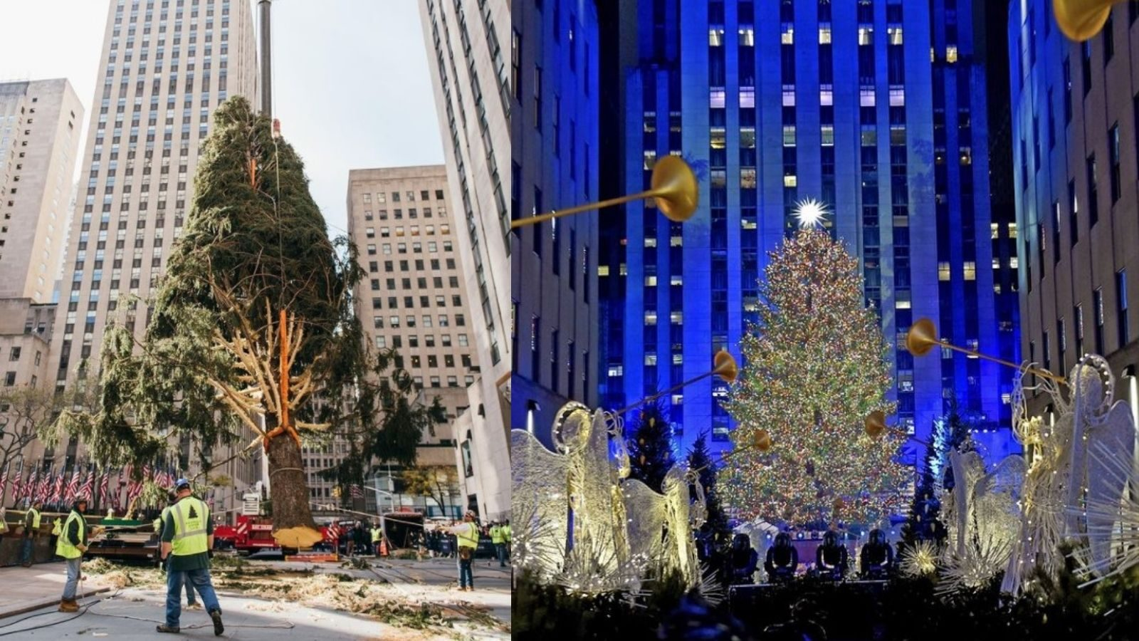 sccbgcy4ajd3vm https www snopes com fact check rockefeller christmas trees real