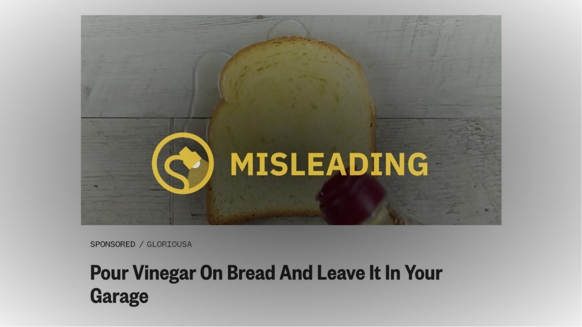 Can Vinegar on a Slice of Bread Remove Odors from a Garage? - snopes
