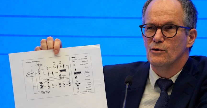 Peter Ben Embarek, of the World Health Organization team holds up a chart showing pathways of transmission of the virus during a joint press conference held at the end of the WHO mission in Wuhan in central China's Hubei province on Tuesday, Feb. 9, 2021. (AP Photo/Ng Han Guan)