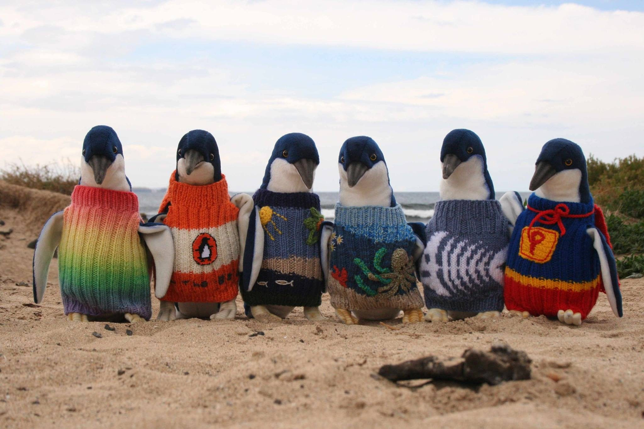 Does Australia's Oldest Man Knit Sweaters for Injured Penguins? - snopes