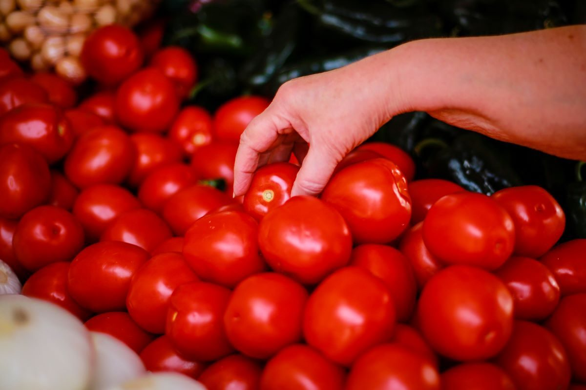Are Tomatoes Fruits or Vegetables? - snopes