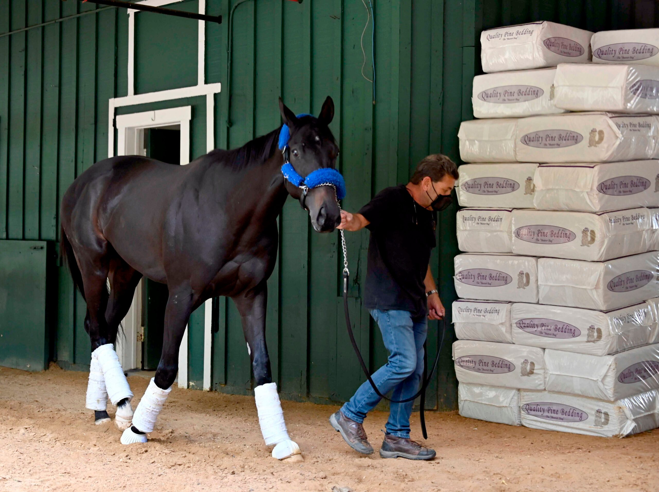 Baffert: Anti-Fungal Meds Given to Derby Winner Had Steroid - snopes