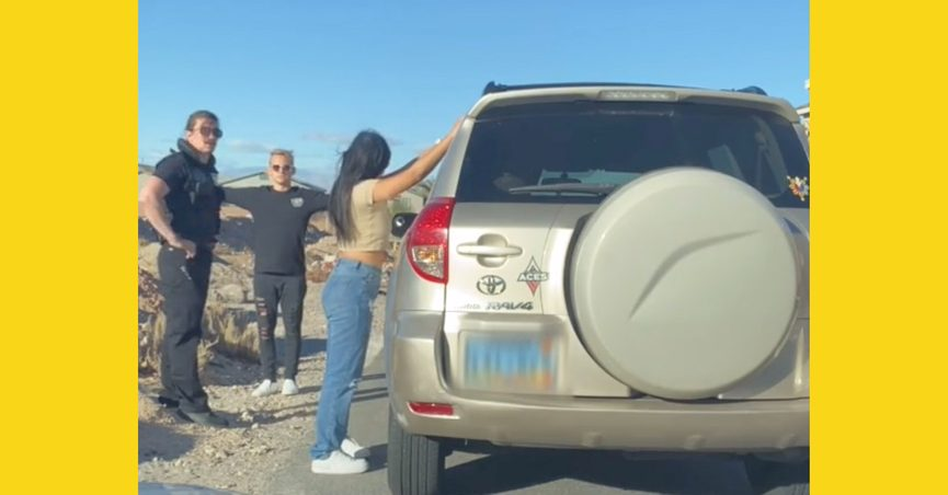 A TikTok video purportedly showed a cop police officer catching his cheating wife during a traffic stop.
