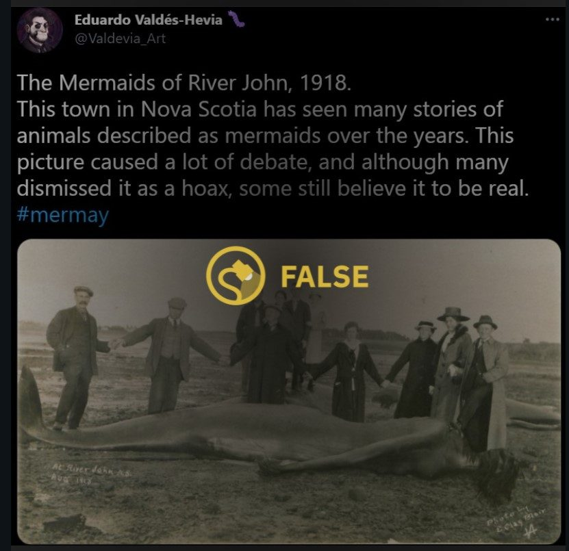 Was a Mermaid Discovered on the River John in 1918? - snopes