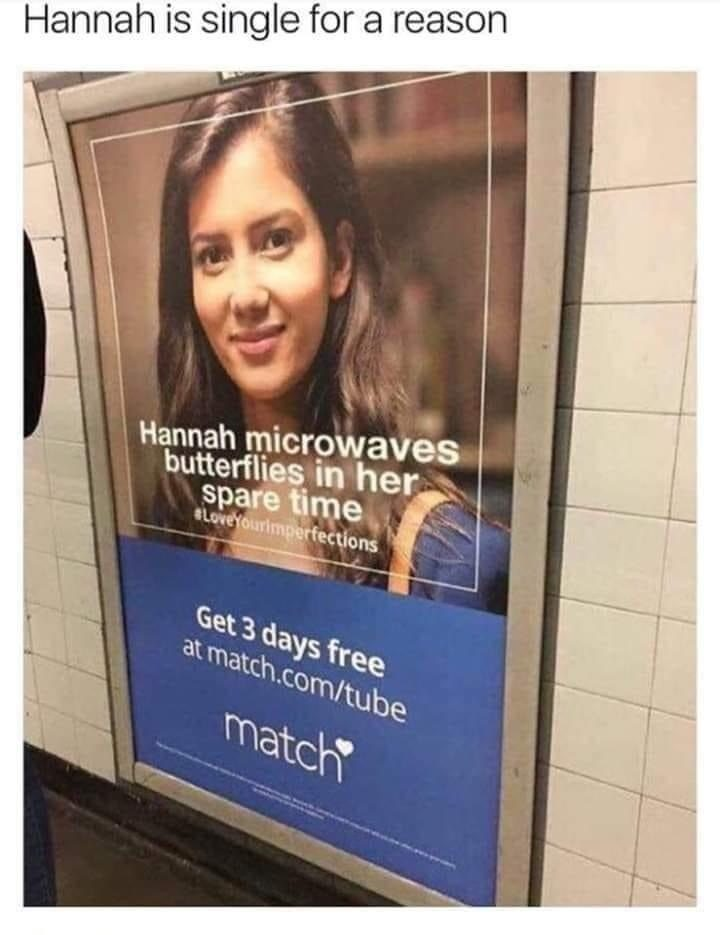hannah microwaves butterflies in her spare time