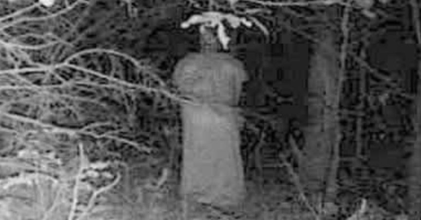This purportedly paranormal figure or ghost or demon or alien in the woods was supposedly caught on a trail camera or trail cam.