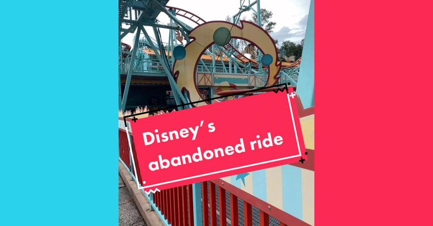 An abandoned Disney World roller coaster ride attraction in Animal Kingdom Park was Primeval Whirl.