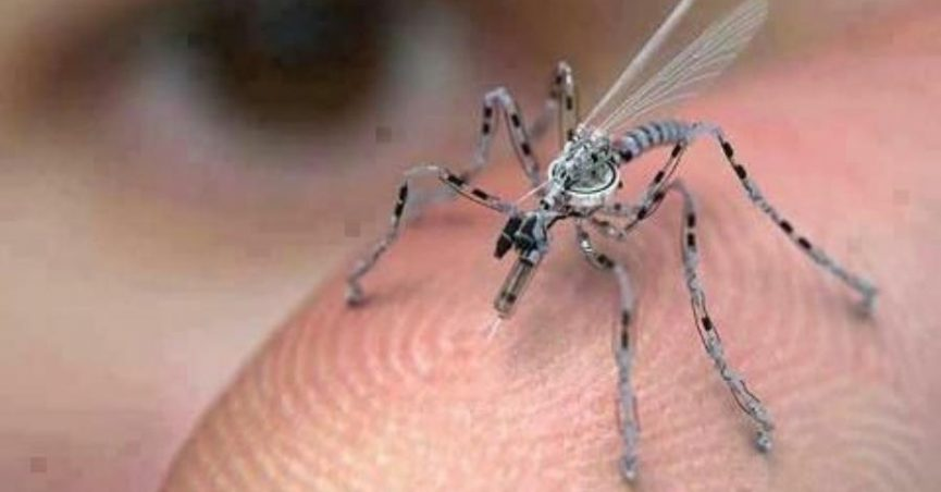Insect Spy Drone